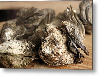 Oyster Roast Metal Print by Greg Simmons