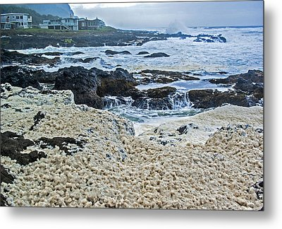 Metal Print featuring the photograph Pacific Gift by Dale Stillman