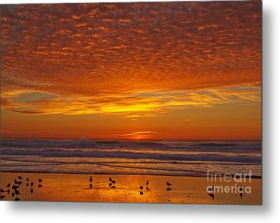 Pacific On Fire Metal Print by Tim Moore