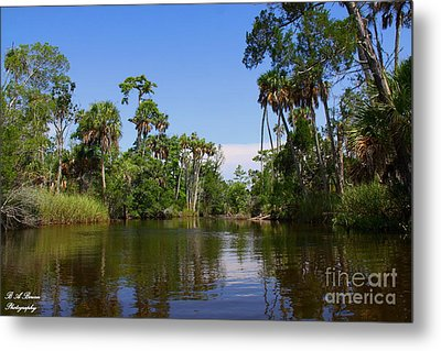 Paddling Otter Creek Metal Print by Barbara Bowen