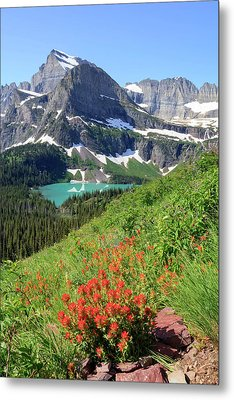 Paintbrush Above Grinnell Lake Metal Print