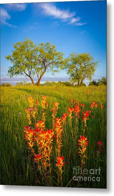 Paintbrush On Fire Metal Print by Inge Johnsson