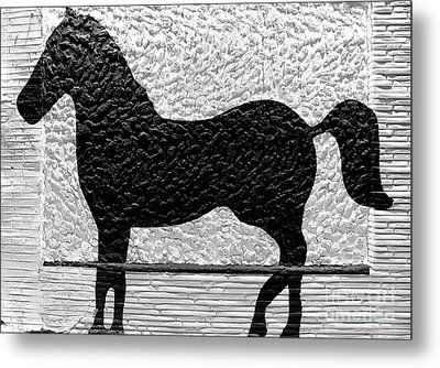 Metal Print featuring the photograph Painted Black - Stone Pony by Colleen Kammerer
