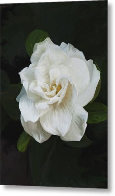 Metal Print featuring the photograph Painted Gardenia by Phyllis Denton
