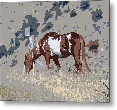 Metal Print featuring the photograph Painted Horse by Steve McKinzie
