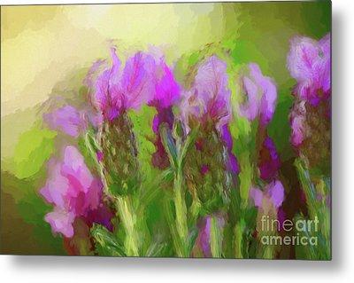 Painted Lavender Sunset By Kaye Menner Metal Print by Kaye Menner
