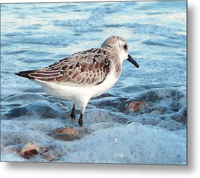 Painted Piper Metal Print by Margie Avellino
