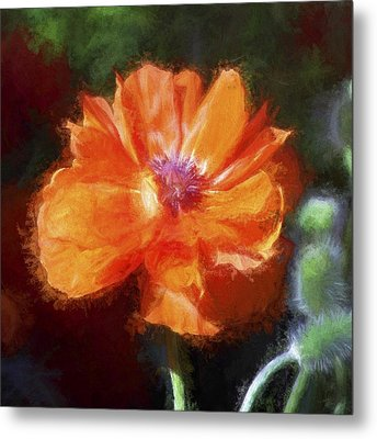 Painted Poppy Metal Print