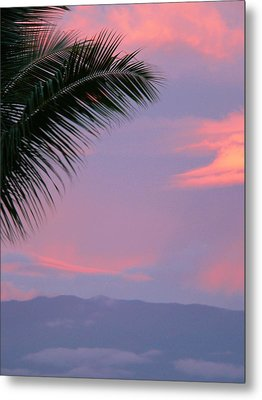 Metal Print featuring the photograph Painted Sky by Debbie Karnes
