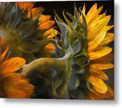 Metal Print featuring the photograph Painted Sun Flowers by John Rivera