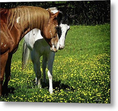 Paints And Buttercups Metal Print