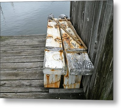 Paired Up Metal Print by Anna Ruzsan