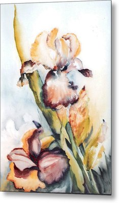 Pale Iris Metal Print