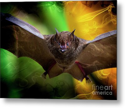 Metal Print featuring the photograph Pale Spear-nosed Bat In The Amazon Jungle by Al Bourassa