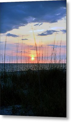 Palm Island II Metal Print by Anthony Baatz