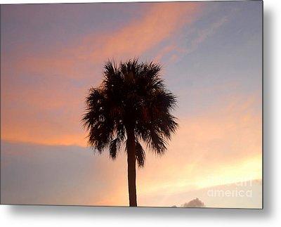 Palm Sky Metal Print by David Lee Thompson