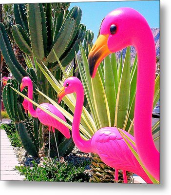 Palm Springs Flamingos 7 Metal Print by Randall Weidner