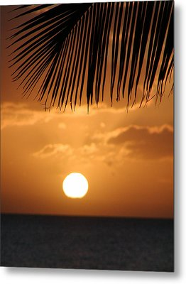 Palm Sunset Hawaii Metal Print by Dustin K Ryan