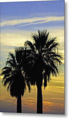 Palm Tree Silhouette Metal Print by Sherri Meyer