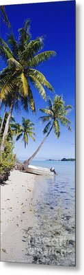 Palm Trees And Motorized Dinghy Metal Print by Jeremy Woodhouse