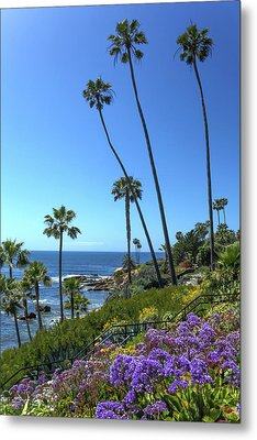 Metal Print featuring the photograph Palm Trees At Heisler Park by Cliff Wassmann