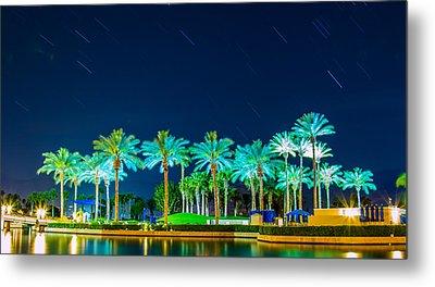 palm Trees Metal Print by Hyuntae Kim