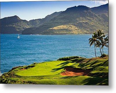 Palm Trees In A Golf Course, Kauai Metal Print