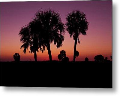 Palm Trees Silhouette Metal Print