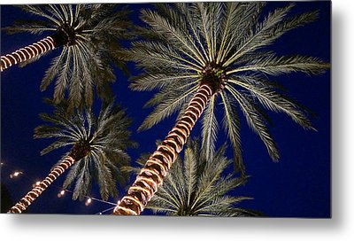 Palm Trees Wrapped In Lights Metal Print