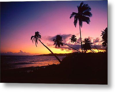 Palmas Del Mar Sunset Puerto Rico Metal Print by George Oze