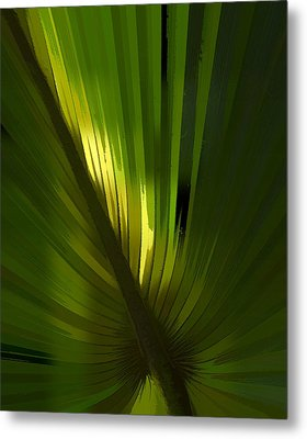 Palmetto Embrace Metal Print by Marvin Spates