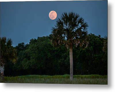 Metal Print featuring the photograph Palmetto Full Moon by RC Pics