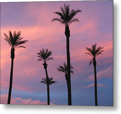 Metal Print featuring the photograph Palms At Sunset by Phyllis Kaltenbach