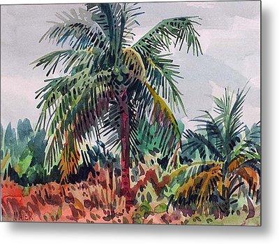 Palms On Big Pine Key Metal Print by Donald Maier