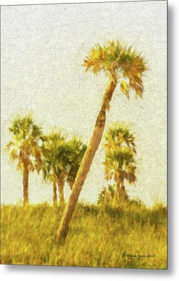 Palms On Canvas Metal Print by Marvin Spates