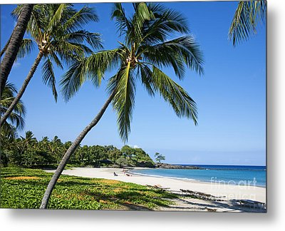 Palms Over Beach II Metal Print by Ron Dahlquist - Printscapes