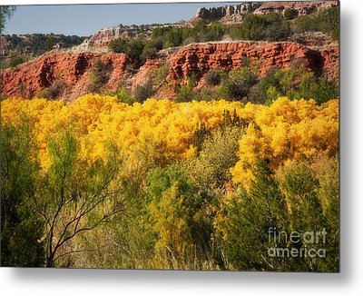 Palo Duro Canyon Fall Colors Metal Print