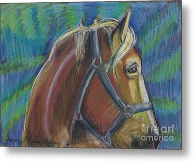 Palomino  Drawing Metal Print by Jamey Balester