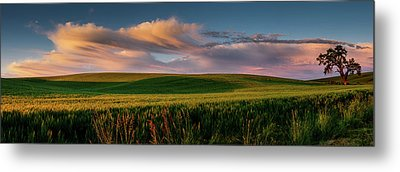 Metal Print featuring the photograph Palouse Tree Of Life by Dan Mihai