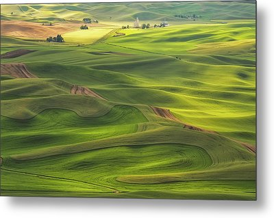 Metal Print featuring the photograph Palouse Views by Patricia Davidson