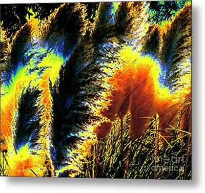 Metal Print featuring the photograph Pampas Grass 1 - Digital Art by Merton Allen