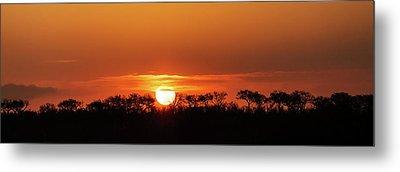 Panorama Of South African Sunset Metal Print by Susan Schmitz