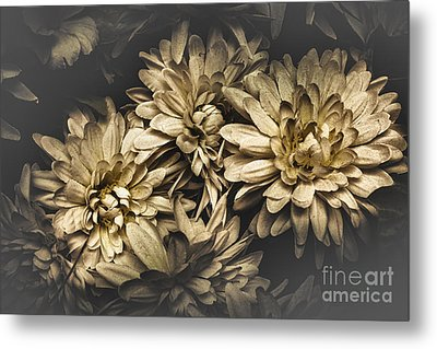 Metal Print featuring the photograph Paper Flowers by Jorgo Photography - Wall Art Gallery