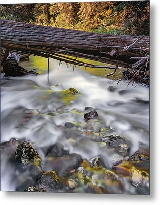 Papoose Creek Metal Print