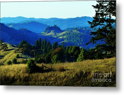 Paradise Metal Print by JoAnn SkyWatcher