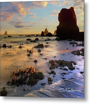 Paradise On Earth Metal Print by Tim Fitzharris