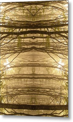 Paradoxical Forest Metal Print by Edouard Coleman