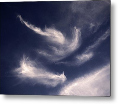 Metal Print featuring the photograph Pareidolia by Robert Geary