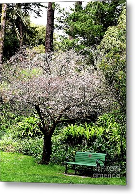 Park Bench At The Old Cherry Blossom Tree . 7d5804 Metal Print by Wingsdomain Art and Photography