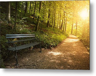Park Bench In Fall Metal Print by Chevy Fleet